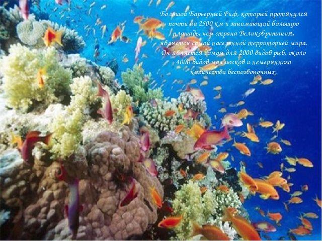 Большой Барьерный Риф, который протянулся почти на 2500 км и занимающий боль...