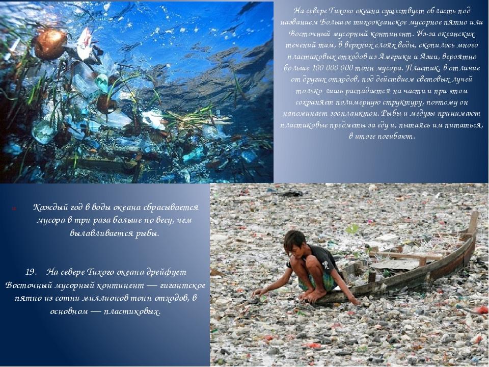 На севере Тихого океана существует область под названием Большое тихоокеанско...