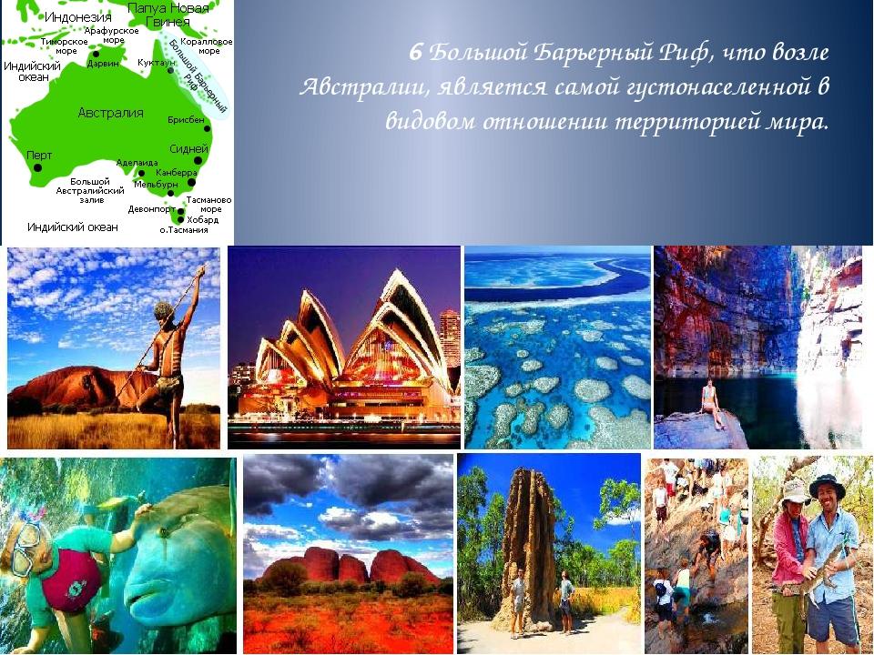 6 Большой Барьерный Риф, что возле Австралии, является самой густонаселенной...