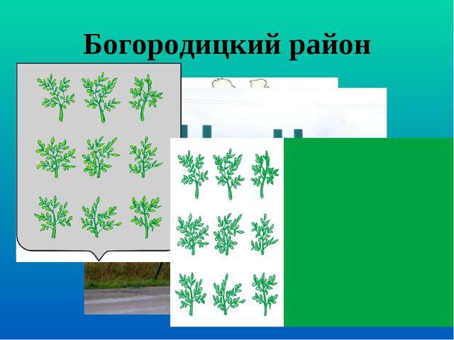 Богородицкий район