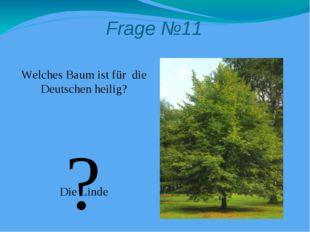 Frage №11 Welches Baum ist für die Deutschen heilig? Die Linde ?