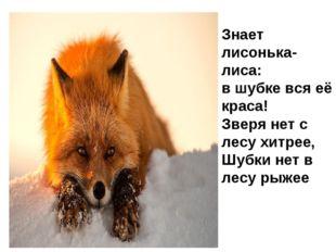 Знает лисонька-лиса: в шубке вся её краса! Зверя нет с лесу хитрее, Шубки нет