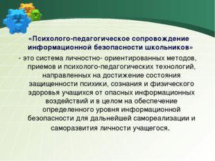 «Психолого-педагогическое сопровождение информационной безопасности школьник