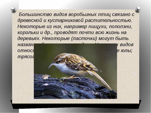 Большинство видов воробьиных птиц связано с древесной и кустарниковой растит...