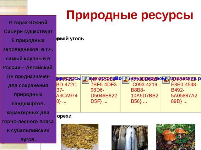 Природные ресурсы В горах Южной Сибири существует 5 природных заповедников, в...