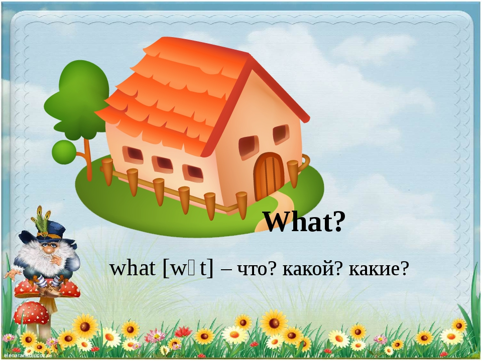 What? what [wɔt] – что? какой? какие?
