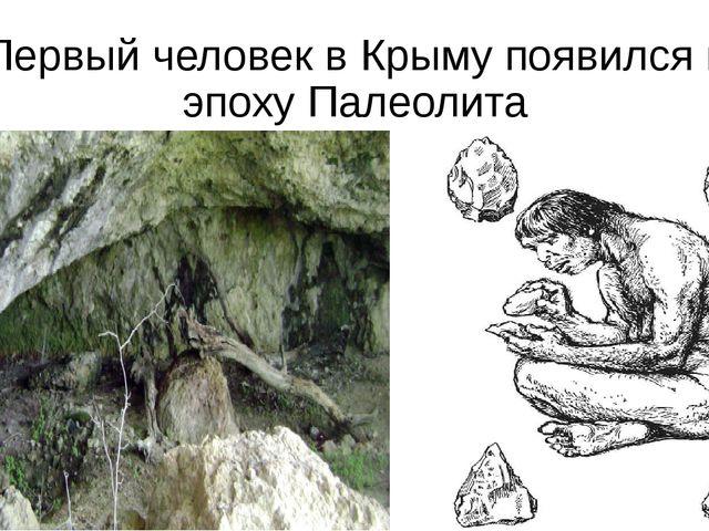 Первый человек в Крыму появился в эпоху Палеолита