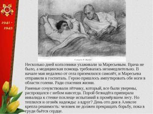 Несколько дней колхозники ухаживали за Маресьевым. Врача не было, а медицинск