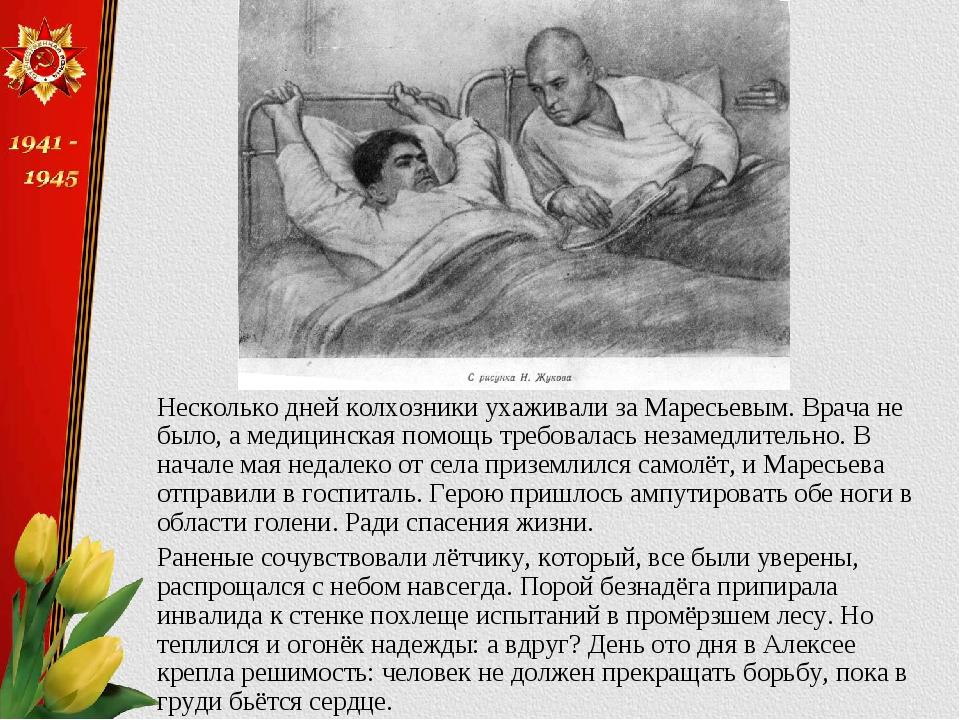 Несколько дней колхозники ухаживали за Маресьевым. Врача не было, а медицинск...