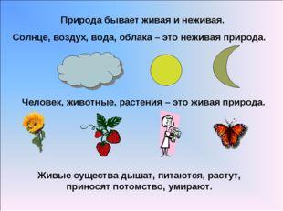 Природа бывает живая и неживая. Солнце, воздух, вода, облака – это неживая пр