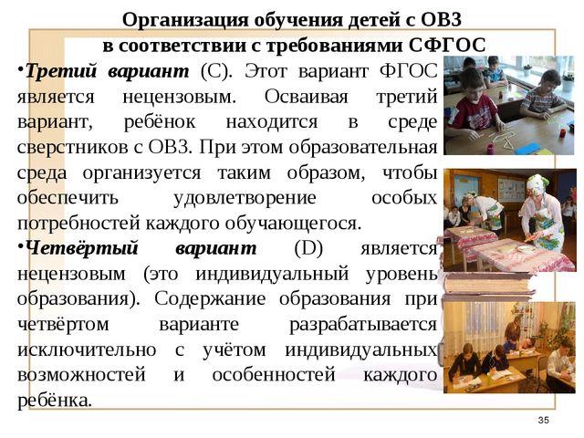 Организация обучения детей с ОВЗ в соответствии с требованиями СФГОС Третий в...