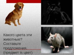 Какого цвета эти животные? Составьте предложения. (предмет is цвет)