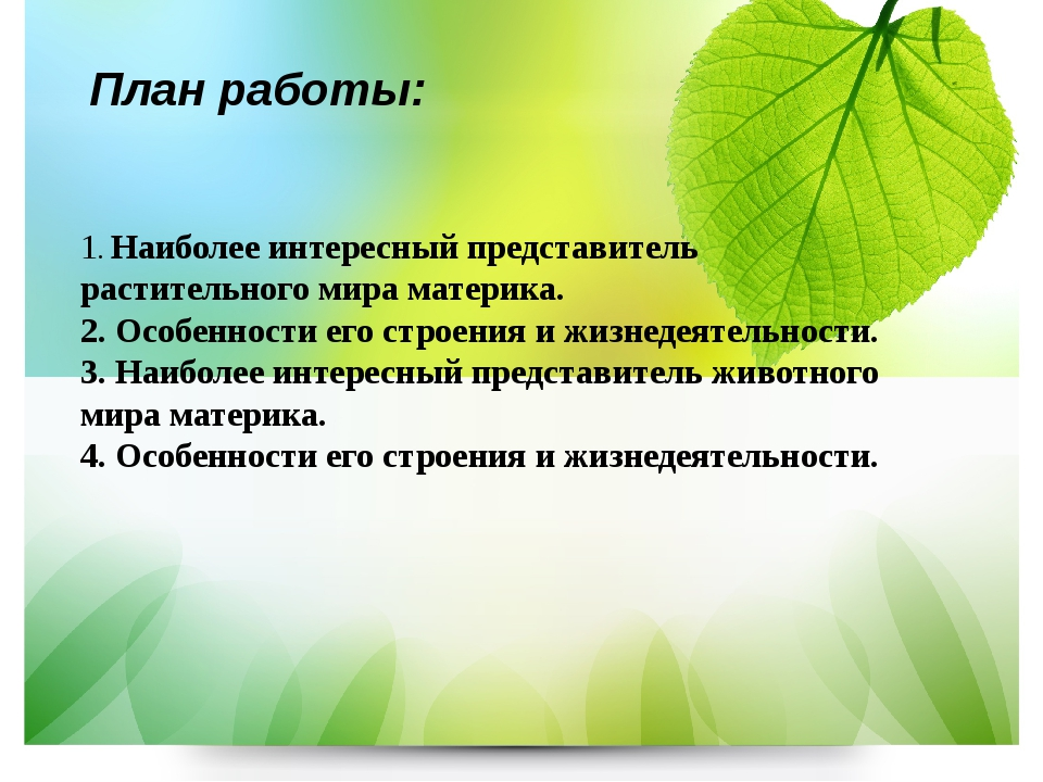План работы: 1. Наиболее интересный представитель растительного мира материка...