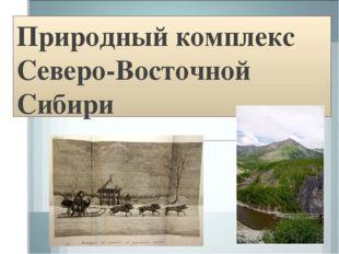 Природный комплекс Северо-Восточной Сибири