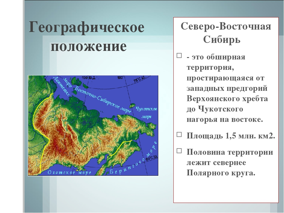 Географическое положение Северо-Восточная Сибирь - это обширная территория, п...