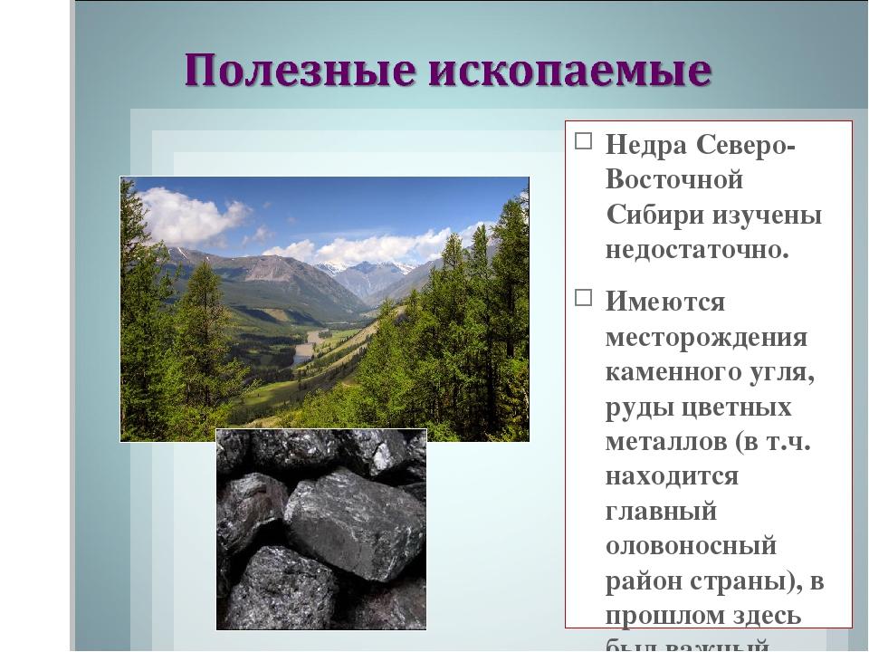 Недра Северо-Восточной Сибири изучены недостаточно. Имеются месторождения кам...