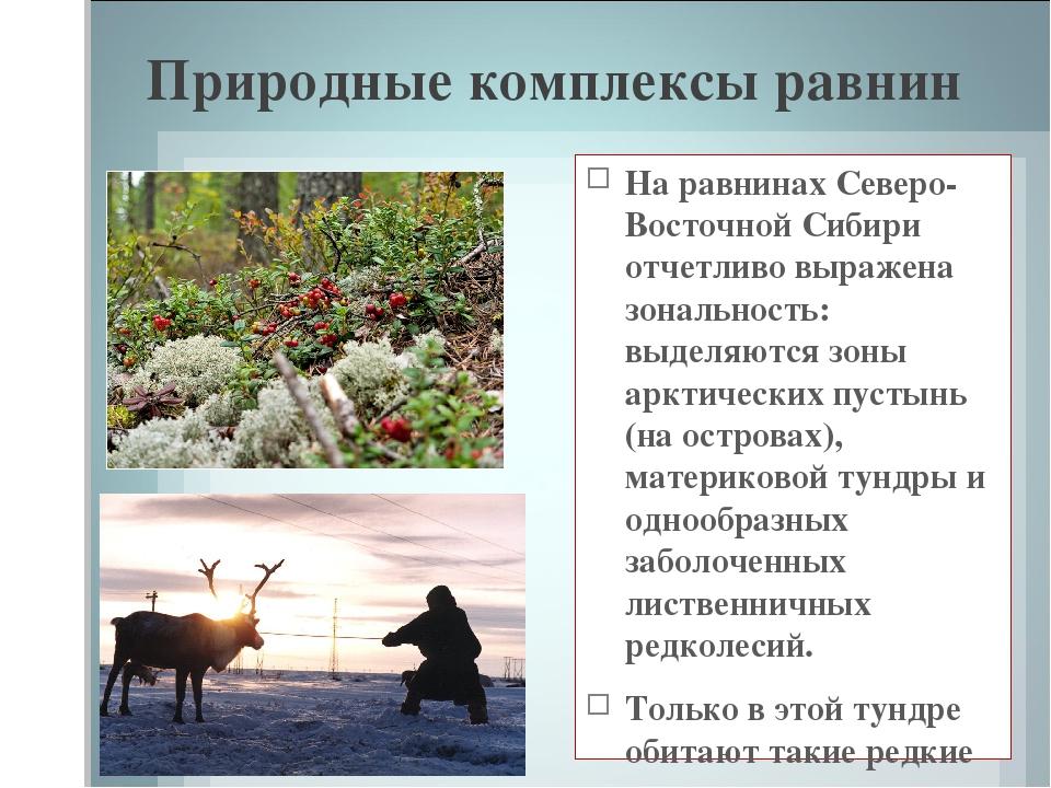 Природные комплексы равнин На равнинах Северо-Восточной Сибири отчетливо выра...
