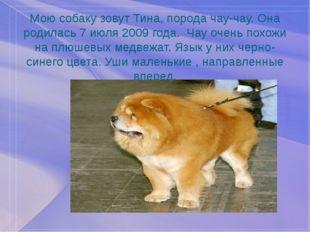 Мою собаку зовут Тина, порода чау-чау. Она родилась 7 июля 2009 года. Чау оче