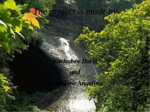 The project is made by Kochubey Daria and Demidova Angelina