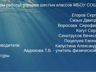 Авторы работы: ученики шестых классов МБОУ СОШ №2: Егоров Сергей Сизых Дмитр