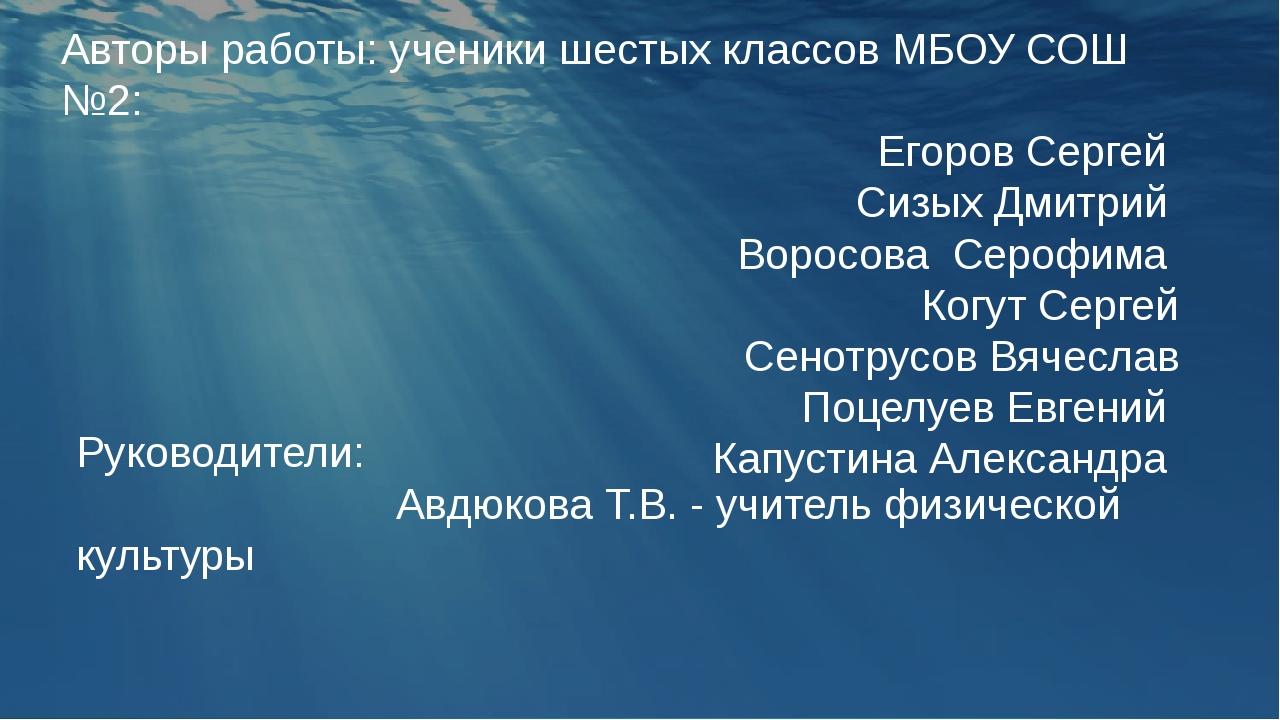 Авторы работы: ученики шестых классов МБОУ СОШ №2: Егоров Сергей Сизых Дмитр...