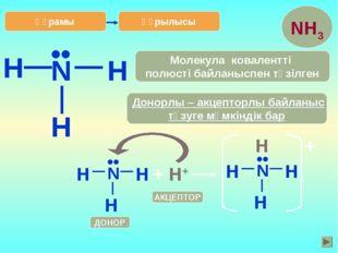 H Құрылысы N H H •• Донорлы – акцепторлы байланыс түзуге мүмкіндік бар Молеку