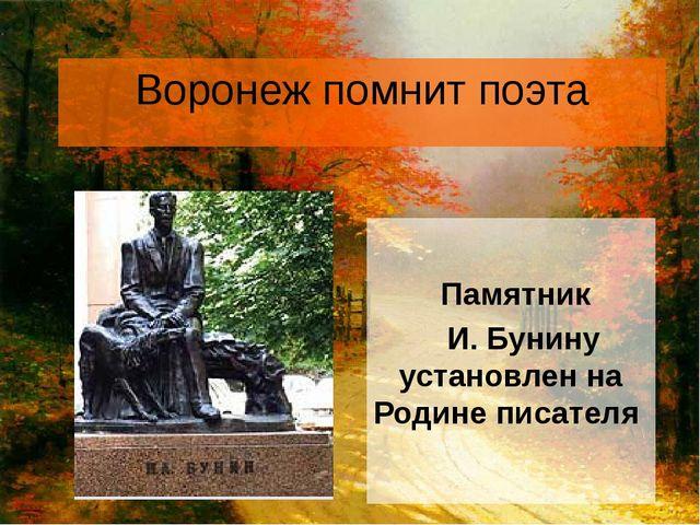 Воронеж помнит поэта Памятник И. Бунину установлен на Родине писателя
