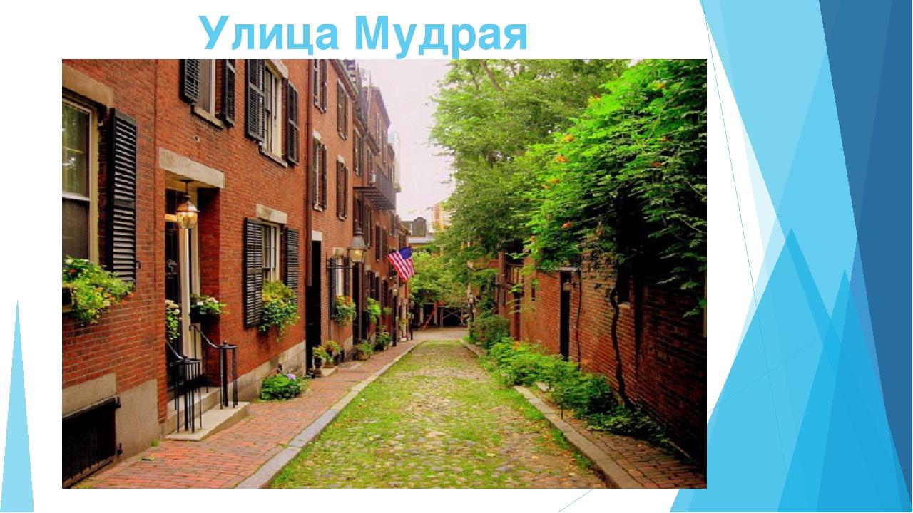 Улица Мудрая