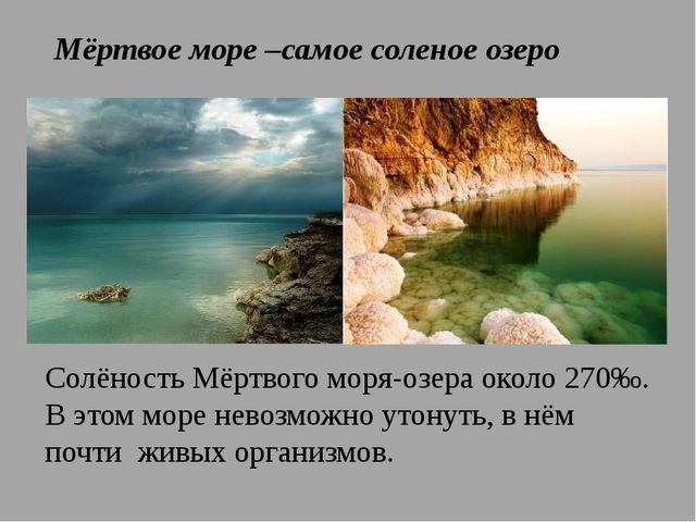 Мёртвое море –самое соленое озеро Солёность Мёртвого моря-озера около 270‰. В...