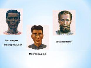 Монголоидная Европеоидная Негроидная экваториальная