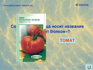 «Космическая» биология 40 баллов Сорт какого овоща носит название «Космонавт
