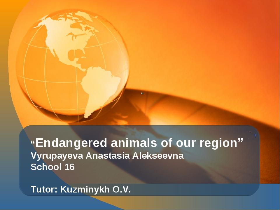 """ ""Endangered animals of our region"" Vyrupayeva Anastasia Alekseevna School 1..."