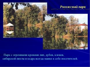 Парк с огромными кронами лип, дубов, кленов, сибирской пихты и кедра всегда