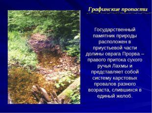 Государственный памятник природы расположен в приустьевой части долины оврага