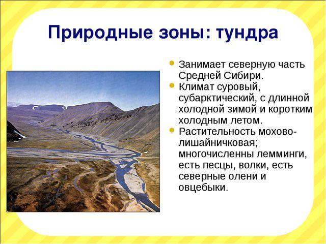 Природные зоны: тундра Занимает северную часть Средней Сибири. Климат суровый...