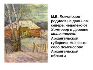 М.В. Ломоносов родился на дальнем севере, недалеко от Холмогор в деревне Миша