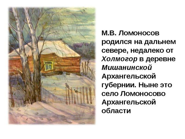 М.В. Ломоносов родился на дальнем севере, недалеко от Холмогор в деревне Миша...
