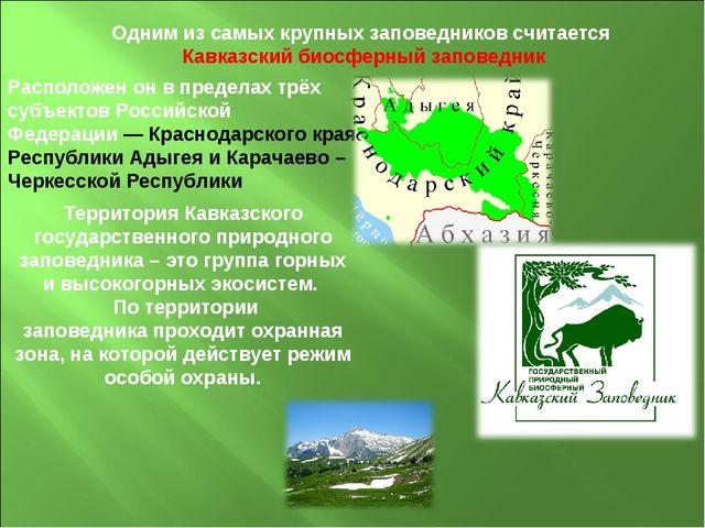 Одним из самых крупных заповедников считается Кавказский биосферный заповедни...