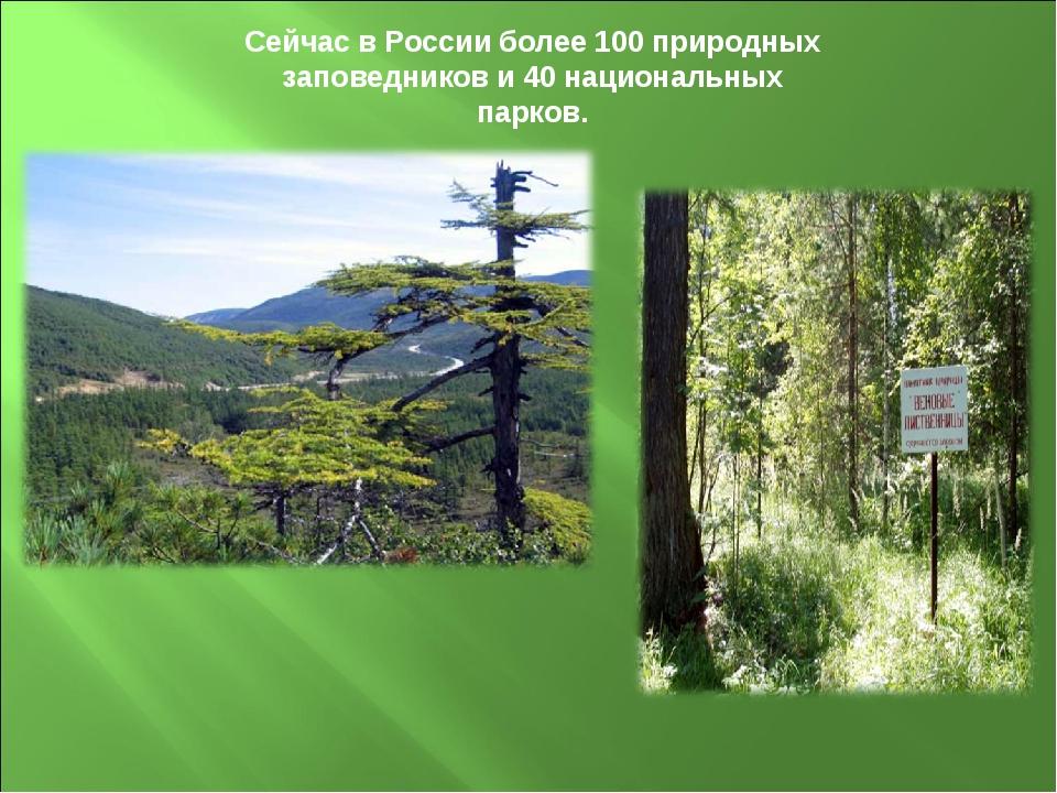 Сейчас в России более 100 природных заповедников и 40 национальных парков.