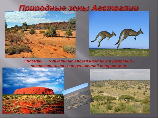 Эндемики - уникальные виды животных и растений , встречающихся на ограниченно...
