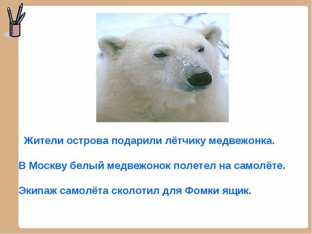 Жители острова подарили лётчику медвежонка. В Москву белый медвежонок полете...