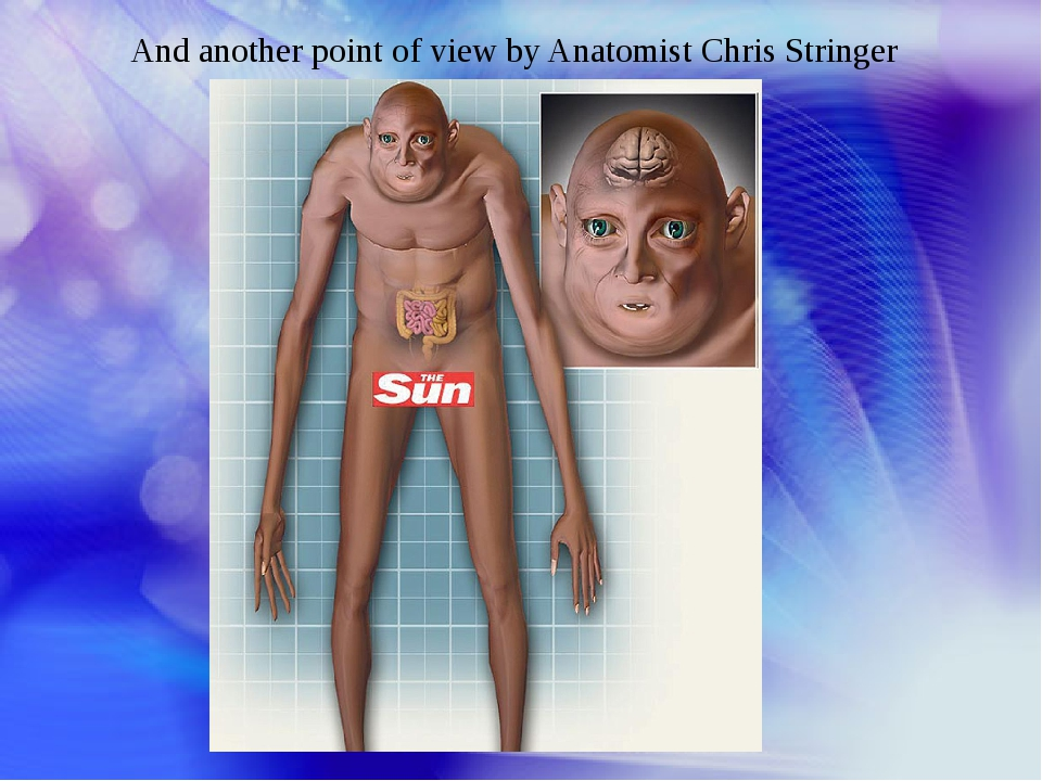 And another point of view by Anatomist Chris Stringer