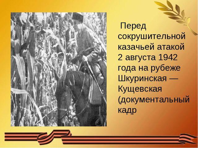 Перед сокрушительной казачьей атакой 2 августа 1942 года на рубеже Шкуринска...
