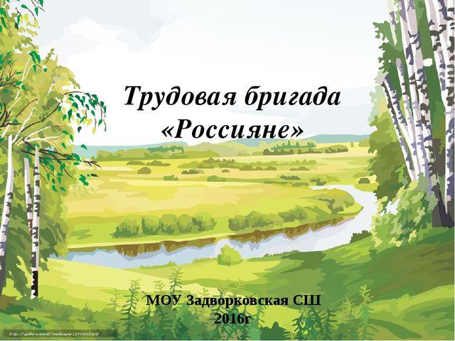 Трудовая бригада «Россияне» МОУ Задворковская СШ 2016г