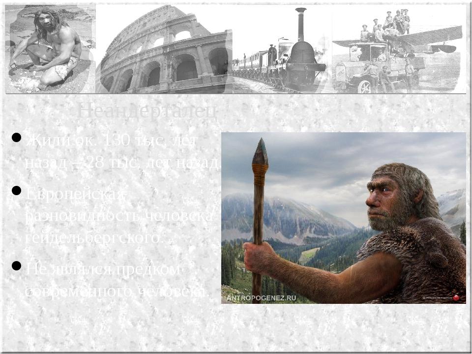 Жили ок. 130 тыс. лет назад – 28 тыс. лет назад. Европейская разновидность че...