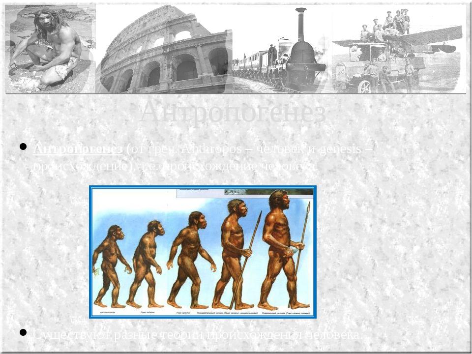 Антропогенез (от греч. Anthropos – человек и genesis – происхождение), т.е. п...