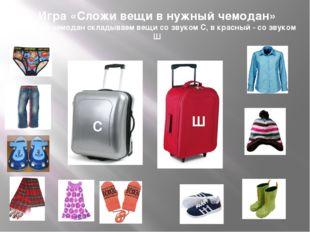 Игра «Сложи вещи в нужный чемодан» В серый чемодан складываем вещи со звуком