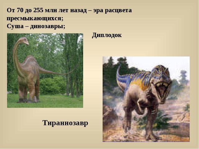 От 70 до 255 млн лет назад – эра расцвета пресмыкающихся; Суша – динозавры; Д...