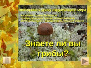 Знаете ли вы грибы? Викторина к уроку окружающего мира Хлопянова Татьяна Вита