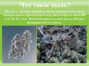 Что такое пыль? Пыль — мелкие твёрдые тела органического или минерального про